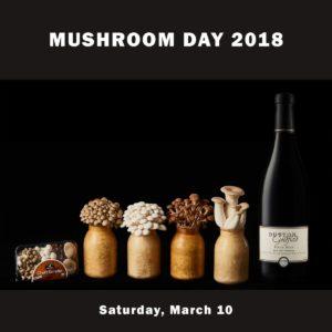 Mushroom Day @ Sebastopol | CA | United States