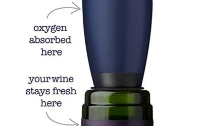 Product Review: Wine Tasting Made Better with Repour