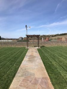 Vineyard Yoga Happy Hour at Zaca Mesa @ Zaca Mesa Winery | Los Olivos | CA | United States