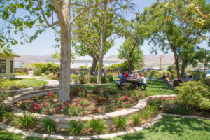 Father's Day Weekend: food truck, live music + wine tasting @ Riverbench Vineyard & Winery | Santa Maria | CA | US