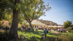 Vineyard Picnic with Live Music by Ben Bostick @ Riverbench Vineyard & Winery | Santa Maria | CA | US
