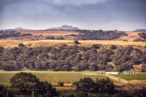 Riverbench Annual Industry Gathering @ Riverbench Vineyard & Winery | Santa Maria | CA | US