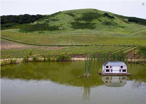 schug-winery