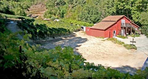 chouinard-winery