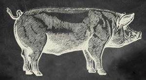 Harvest Pig Roast @ Riggers Loft Wine Company | Richmond | CA
