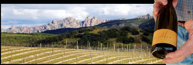 michaud-vineyard-header_home