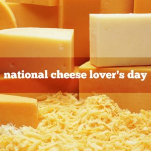 Wine, Cheese, and Cheesecake for National Cheese Lover's Day! @ Winemaker Studios | San Francisco | CA | US