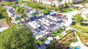 7th Annual VINDIEGO Wine and Food Festival (with discount code!) @ Waterfront Park | San Diego | CA | US
