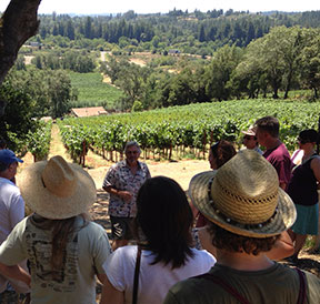 Summer BBQ & Vineyard Walk @ Moshin Vineyards | Healdsburg | CA | United States