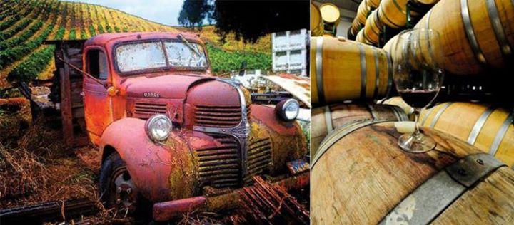 2nd Annual Garagiste Wine Festival, Sonoma