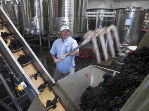 2019 Vista Collina Crushcamp: Friday, September 13th @ The Wine Foundry   Napa   CA   US